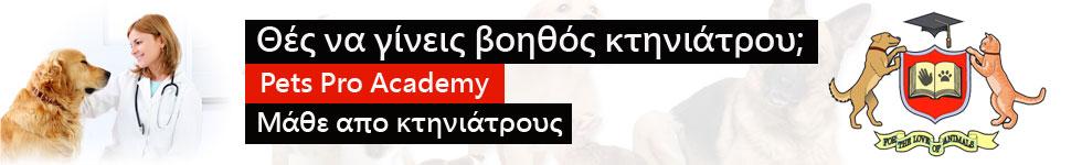 www.petsproacademy.gr 2