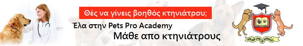www.petsproacademy.gr