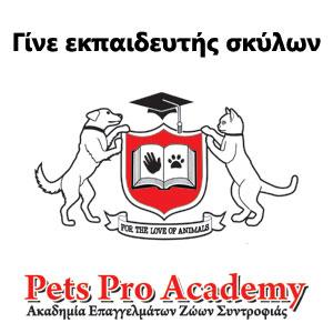 Pets Pro Academy