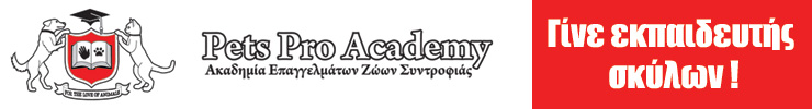 Pets Pro Academy Article